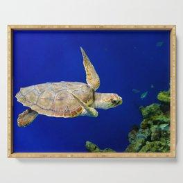 Sea Turtle 1 Marine Animal / Underwater Wildlife Photograph Serving Tray