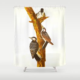 Red-cockaded Woodpecker Shower Curtain