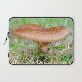 Brown rollrim - Paxillus involutus Laptop Sleeve