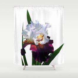 Iris 'Connection' Shower Curtain