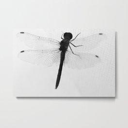 silhouette of dragonflie Metal Print