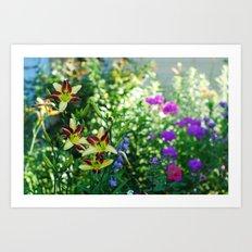 just a flower  Art Print