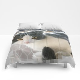 A Max And Mantle Bi Colour Cat Comforters