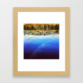 Cardiff Bay Wetlands Framed Art Print