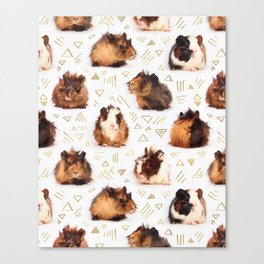 The Essential Guinea Pig Canvas Print