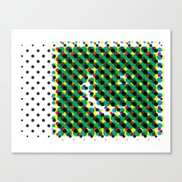 Pakistan Canvas Print