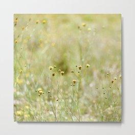 Texas Wildflowers Metal Print