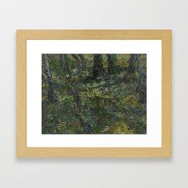 Undergrowth Framed Art Print