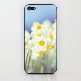 Daffy flowers iPhone Skin