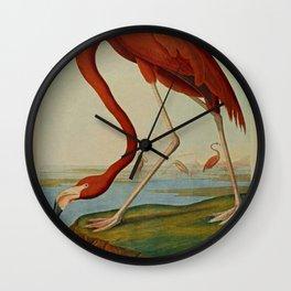 American Flamingo by John Audubon (1785 – 1851) Reproduction. Wall Clock