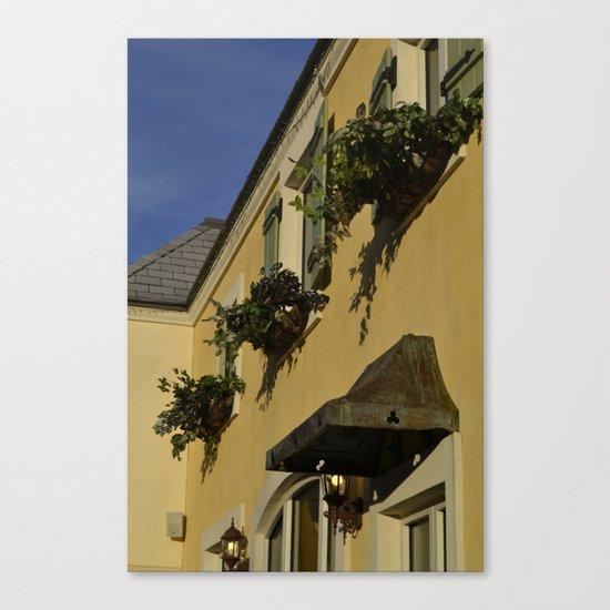 window plants Canvas Print