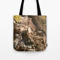 Big Rock by the beach Tote Bag