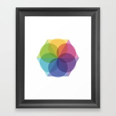 Fig. 012 Framed Art Print