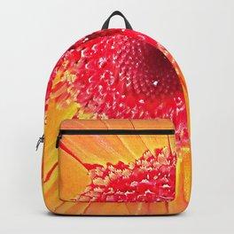 Gerbera  Backpack