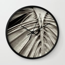 cabbage palm tree leaf Wall Clock