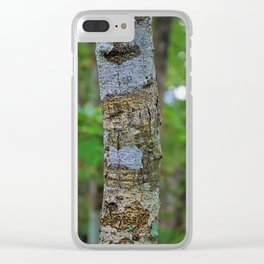 In the Midst of Six Mile Clear iPhone Case