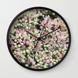 Mint Green and Blush Pink Sedum Wall Clock