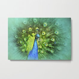 Peacock Pinwheel Metal Print