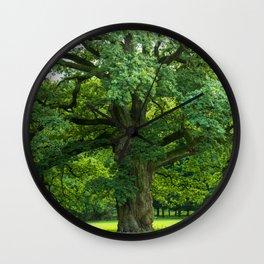 Old green oak Wall Clock