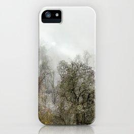 Winter Spell iPhone Case