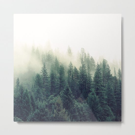 Foggy Winter Forest Metal Print