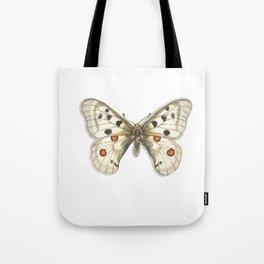 Butterflies: Apollo Tote Bag