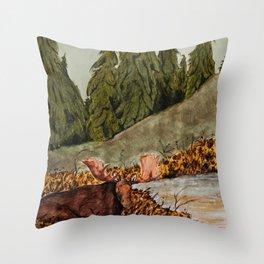 skjulte kilder og tjern Throw Pillow