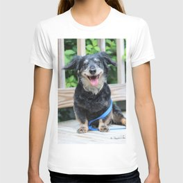 Reuben T-shirt