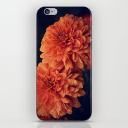 If A Flower Was The Sun iPhone Skin