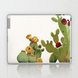 Cactus Garden II Laptop & iPad Skin