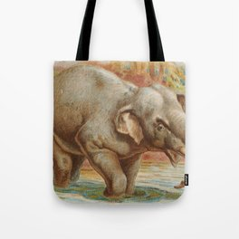 Vintage Illustration of an Elephant (1890) Tote Bag