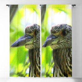 Watercolor Bird Yellow-Crowned Juvenile Night Heron, Forest Friend Blackout Curtain