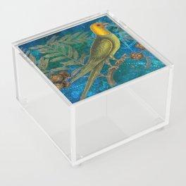 Carolina Parakeet with Cypress, Antique Natural History and Botanical Acrylic Box