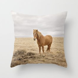 Solitary Horse in Color Throw Pillow