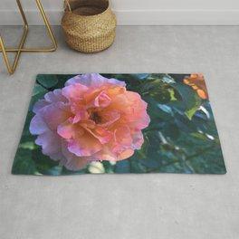 Amazing Impressive Large Pink Rose Blossom Close Up Ultra HD Rug