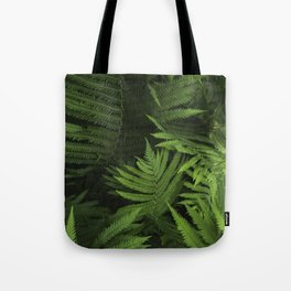 Within the Ferns Tote Bag