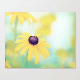 Yellow Turquoise Teal Aqua Blue Daisy Flower Photography, Blackeyed Susan Floral Nature Canvas Print