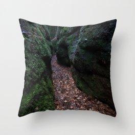 Drachenschlucht Gorge Throw Pillow