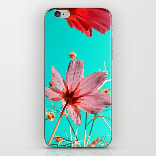 cosmos flowers abstract I iPhone & iPod Skin