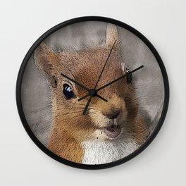 Woodland animals squirrel Smiling back at you Wall Clock