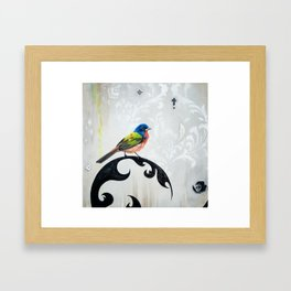 Bird - Painted Bunting Silver Haze Framed Art Print