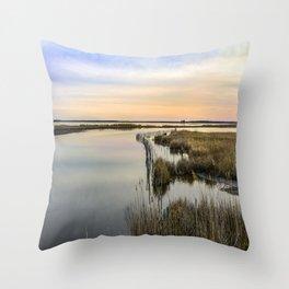 Wildgrass Along the Chesapeake Bay Throw Pillow
