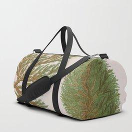 Biota Hybrid Evergreen Vintage Botanical Floral Flower Plant Scientific Duffle Bag