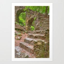 Forest Castle Ruins Art Print