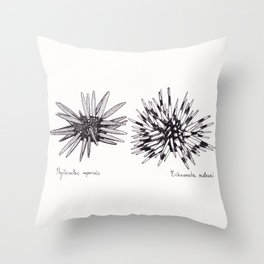 Tropical Sea Urchin Pen & Ink Throw Pillow