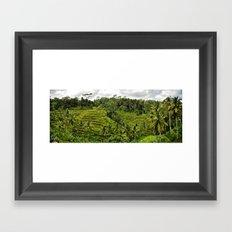 Bali Rice Fields Framed Art Print