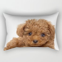 Little Brown Toy Poodle Rectangular Pillow