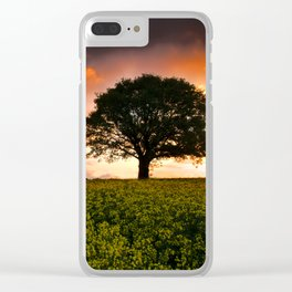 When the Sun Rose Clear iPhone Case