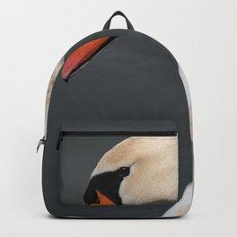 Mute Swan in Winter Backpack
