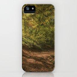 Autumn Woodland  Sunrise iPhone Case